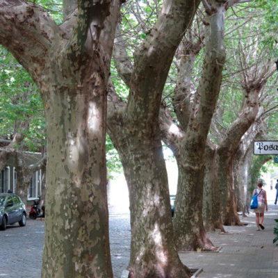 Uruguay, Colonia de Sacramento