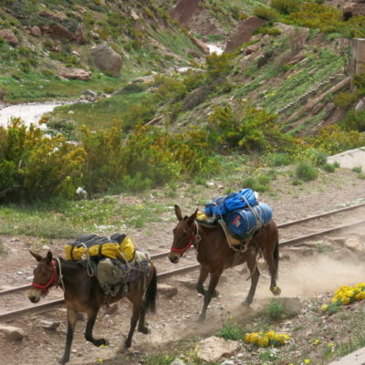 way to Aconcagua, Andes