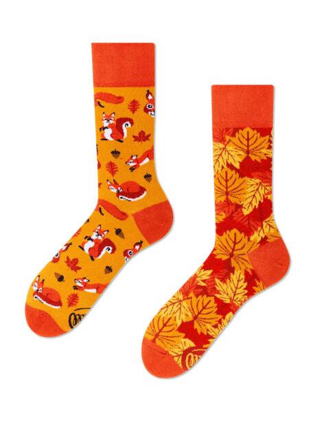 Eichhoernchen Socken MM