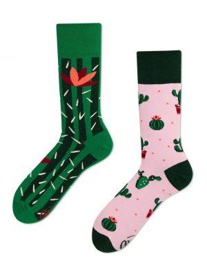 lustige Kaktus Socken