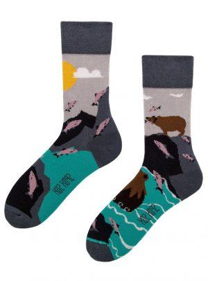 Baer und Lachs - coole Socken Spox Sox