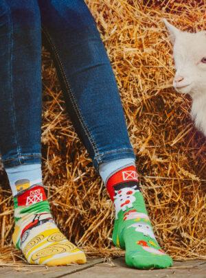 Farm Socken Spox Sox
