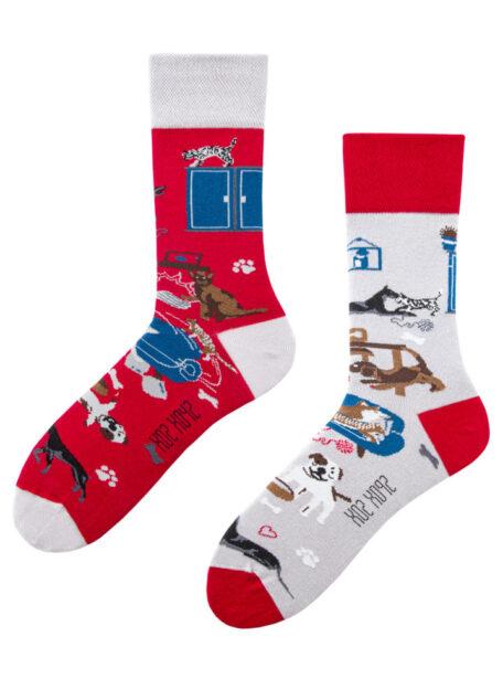 Hundeliebhaber Socken und Katzenliebhaber Socken Spox Sox