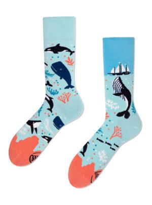 Leben im Ozean Socken