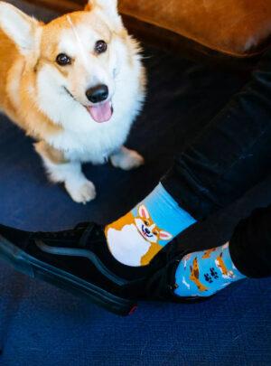 Bunte Socken - Verspielte Hunde