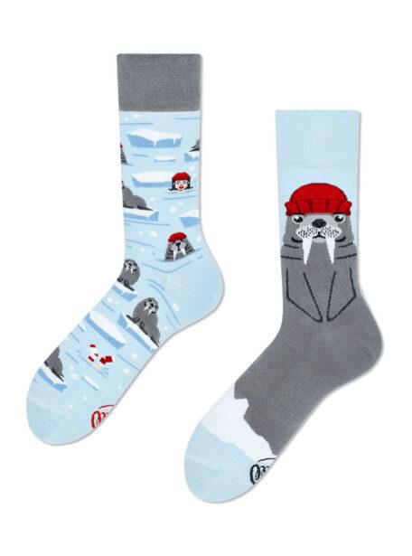 Walross Socken MM